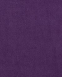 Altea F0529 Violet by