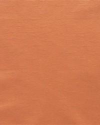 Prima F0610 Apricot by