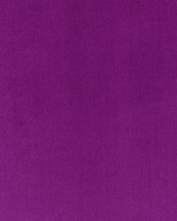 Palais F0649 Violet by