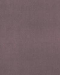 ALVAR F0753/50 CAC AMETHYST by