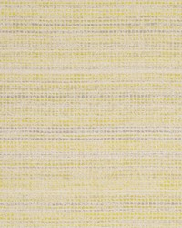 Clarke and Clarke Coba F0799 Citrus Fabric
