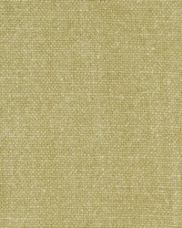 Clarke and Clarke Laval F0812 Sage Fabric