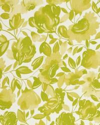 Caitlin Linen F0817 Citrus by