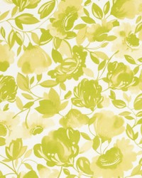 Clarke and Clarke Caitlin Velvet F0818 Citrus Fabric