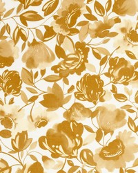 Clarke and Clarke Caitlin Velvet F0818 Gold Fabric