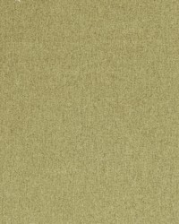Clarke and Clarke Highlander F0848 Fern Fabric