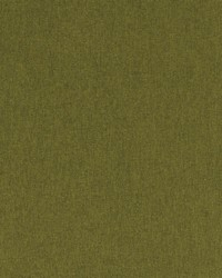 Clarke and Clarke Highlander F0848 Olive Fabric