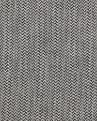 Clarke and Clarke Bw1003 F0875 Black white Fabric