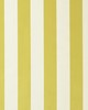 Clarke and Clarke ST JAMES STRIPE F0886 ACACIA