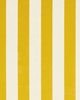 Clarke and Clarke ST JAMES STRIPE F0886 GOLD