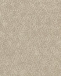 Clarke and Clarke F0962 1 CINNAMON Fabric