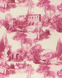 Pink French Country Toile Fabric  F0997 4 RASPBERRY