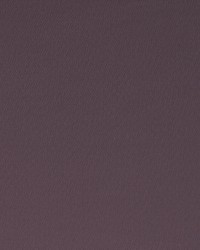 SPECTRUM F1062/08 CAC DAMSON by