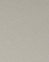 SPECTRUM F1062/24 CAC MUSHROOM by