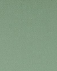 SPECTRUM F1062/42 CAC THYME by
