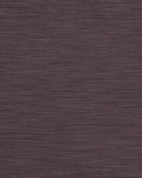 TUSSAH F1079/06 CAC DAMSON by