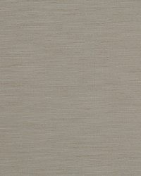 TUSSAH F1079/10 CAC FEATHER by
