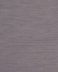 TUSSAH F1079/12 CAC GRAPE by