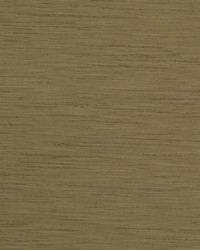 TUSSAH F1079/23 CAC OLIVE by