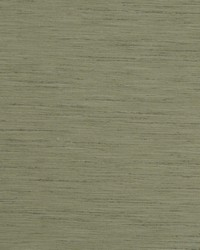 TUSSAH F1079/28 CAC SAGE by