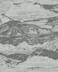 OLYMPUS F1104/04 CAC SILVER by