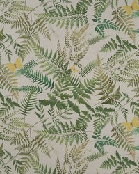 FERN GLADE F1156/01 CAC LINEN by