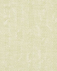 ASHMORE F1177/02 CAC CITRON by