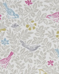 BIRD SONG F1184/03 CAC SUMMER by