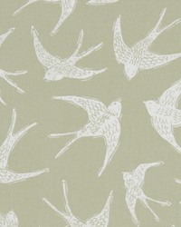 FLY AWAY F1187/05 CAC SAGE by