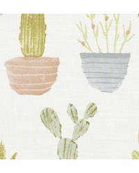 CACTUS F1233/04 CAC PASTEL by