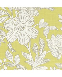 HOLLYHURST F1245/03 CAC CITRUS by