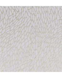 CORALLINO SHEER F1278/02 CAC CHAMPAGNE/GOLD by