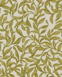 ENTWISTLE F1313/01 CAC CHARTREUSE by