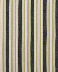ZIBA F1352/02 CAC CHARCOAL/OCHRE by