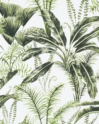 MAJORELLE F1366/02 CAC IVORY by