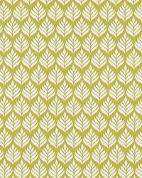 ELISE F1372/03 CAC CITRUS by