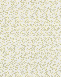 LILA F1375/03 CAC CITRUS by
