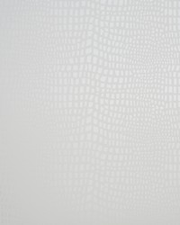 W0004 Shell Wallpaper by
