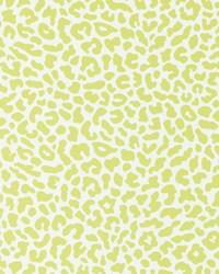 W0043 Citrus Wallpaper by