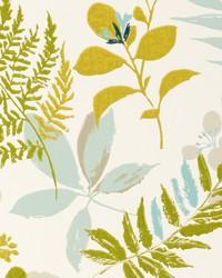 Woodland Wp Aqua by  Clarke and Clarke Wallpaper