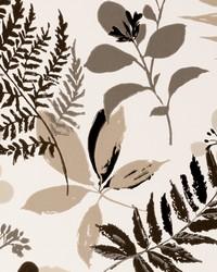 W0047 Charcoal Wallpaper by  Clarke and Clarke Wallpaper