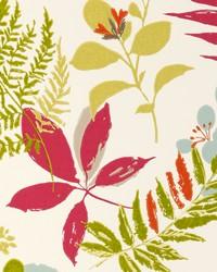 W0047 Raspberry Wallpaper by  Clarke and Clarke Wallpaper