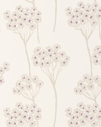 Cowslip Wp Heather by  Clarke and Clarke Wallpaper
