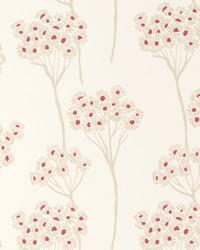 W0048 Raspberry Wallpaper by  Clarke and Clarke Wallpaper