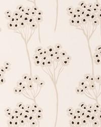 W0048 Charcoal Wallpaper by  Clarke and Clarke Wallpaper