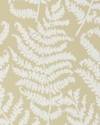 W0049 Parsley Wp Wallpaper by  Clarke and Clarke Wallpaper