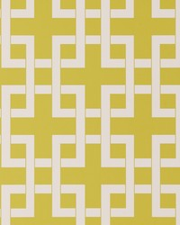 W0051 Citrus Wallpaper by  Clarke and Clarke Wallpaper