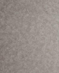 W0056 Pewter Wallpaper by  Clarke and Clarke Wallpaper