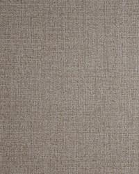 W0057 Bronze Wallpaper by  Clarke and Clarke Wallpaper