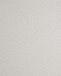 W0058 Parchment Wallpaper by  Clarke and Clarke Wallpaper